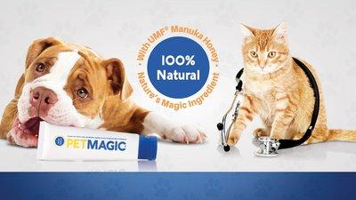 Pet Magic Manuka honing wondcrème voor huisdieren, foto hond en kat
